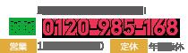 電話受付10:00~22:00(年中無休)TEL0120-985-168