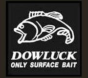 DOWLUCK(道楽)